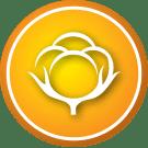 Pastille Éco-valeur - Fibre naturelle | Ethic & chic
